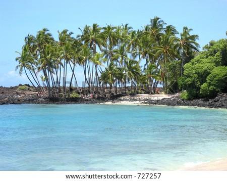 secluded Hawaiian beach - stock photo