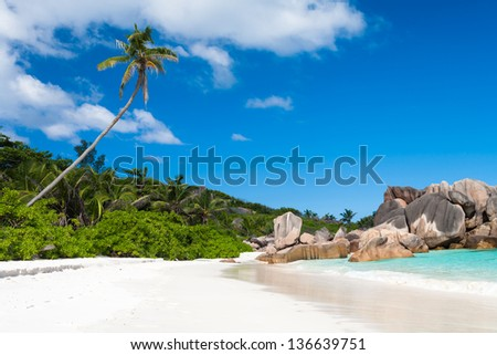 Secluded Tropical Beach in Paradise - stock photo