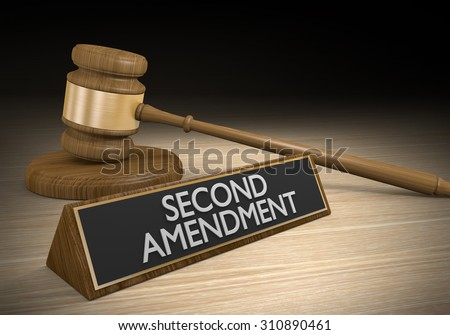 Second Amendment right to bear arms and the gun control legal challenge