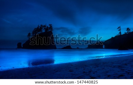 Second Beach, Olympic National Park, WA.  - stock photo