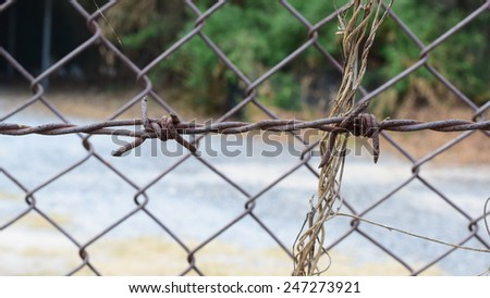 secret area have iron net and barbed wire around