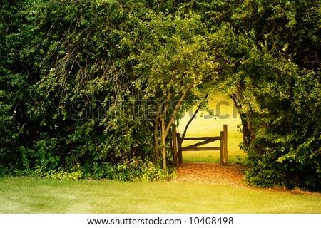 Secret Garden - stock photo