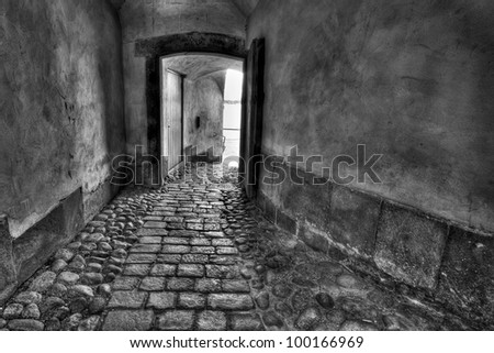 Secret passage. Black and white image.