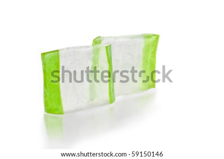section of a leaf of aloe vera - stock photo