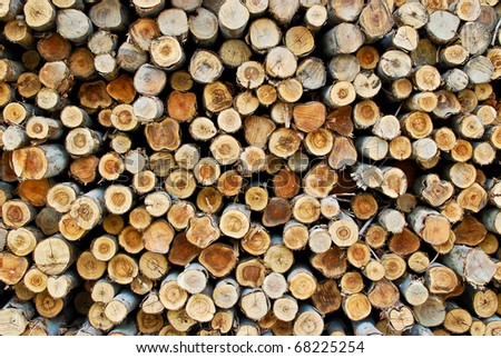Section of the circular timber , Made for firewood - stock photo