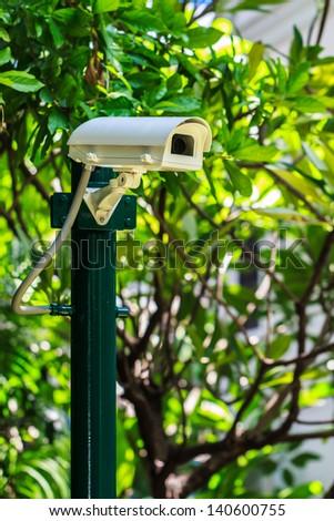 Security Camera in the Garden, CCTV Camera - stock photo