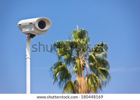 Security camera sits up high on a pole with a palm tree blowing in the background. - stock photo