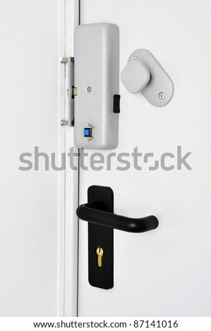 Security Concept. Several lock in only one door.