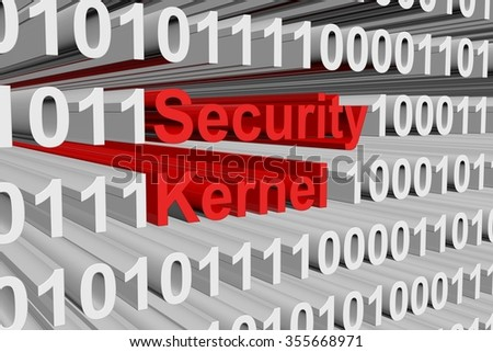 security kernel is presented in the form of binary code