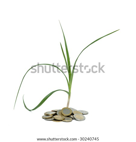 Sedge growing from pile of coins