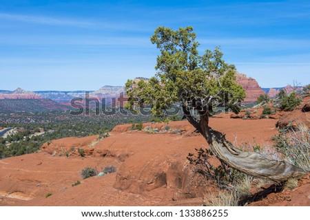 Sedona Arizona area landscape with red sandstone cliffs. - stock photo