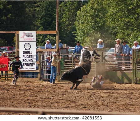 SEDRO WOOLLEY, WA - JULY 4: - An unidentified cowboy gets bucked off a bull at the 75th annual Loggerodeo.  The event took place July 4, 2009 in Sedro Woolley, WA.