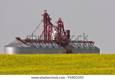 seed cleaning plant near canola crop