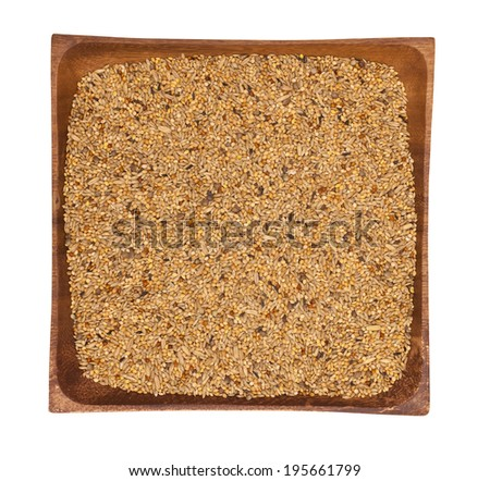 Seed mixture background. Pet food for birds