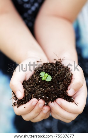 Seedling plant in the hands of a small child. Selective focus with extreme shallow depth of field. Focus on seedling and soil. - stock photo