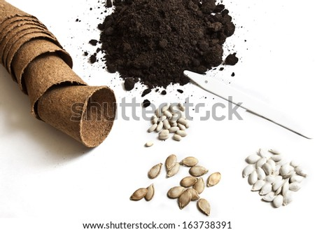 Seeds and soil - stock photo