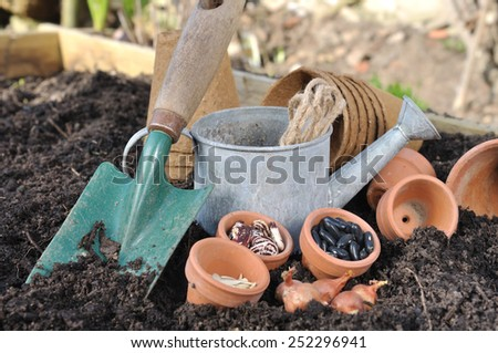 seeds in pot with gardening tools placed on soil to sowing - stock photo