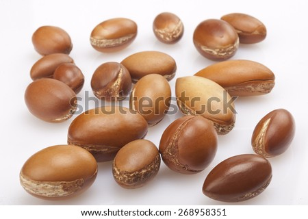 seeds of argan on white,a close up isolated on white - stock photo
