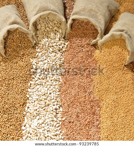 seeds of coriander, sunflower, flax and mustard are spilled from linen sacs - stock photo