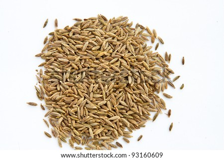 Seeds of cumin on neutral background