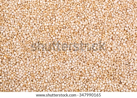Seeds of uncooked quinoa, source of protein for vegetarians. Macro Background - stock photo