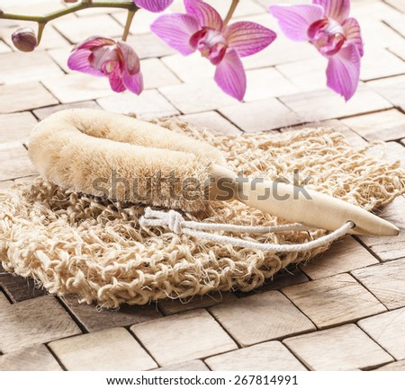 seeking for vitality and purity for spa treatment - stock photo