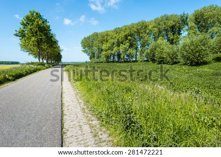 Seemingly endless road through a rural area and in the roadside tall trees and various flowering wild plants. It is springtime now. - stock photo