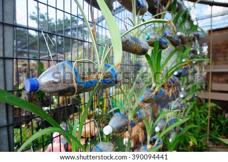 SELANGOR, MALAYSIA - JUNE 06, 2015: Planting flowers and vegetables in plastic containers that have been reused. He was hanged as a vertical garden. - stock photo