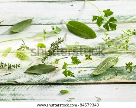 Selection of fresh herbs - stock photo