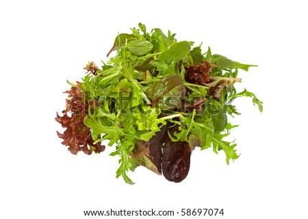 Selection of fresh mixed green salad leaves over white background - stock photo