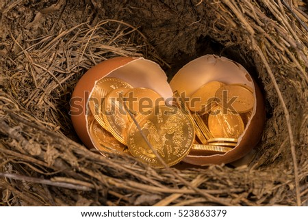 Selection of pure gold USA treasury coins in broken egg shells in twig bird nest illustrating financial security of a retirement nest egg