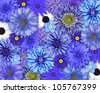 Selection of Various Blue Flowers on top of each other forming blue Background. Daisy, Chrystanthemum, Cornflower, Dahlia, Iberis, Primrose Flowers - stock photo