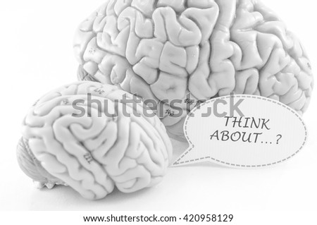 selective focus about human brain model with black and white color