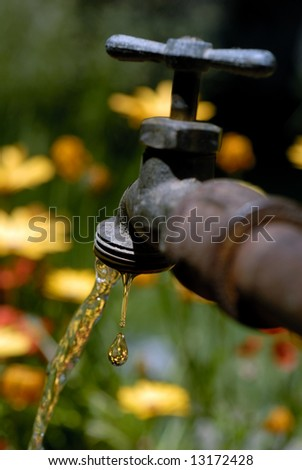 Selective focus macro of dripping spigot against Spring flower garden