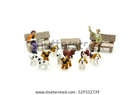 Selective focus miniature puppy dogs and people relax on bench, conceptual.  Shih-Tzu, Pug, beagle, dalmatian, french bulldog puppies.