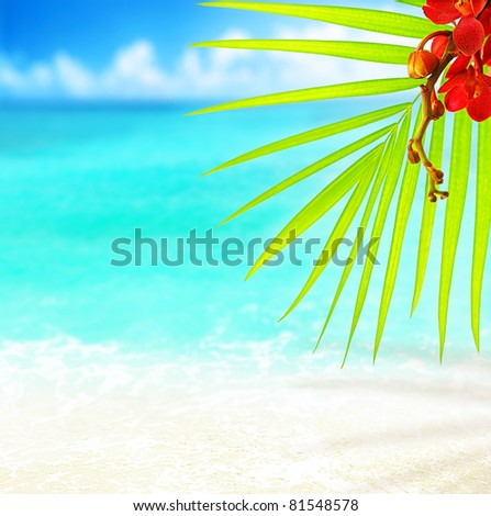 Selective focus on palm tree leaves over peaceful tropical beach background, blue sea landscape, natural abstract card - stock photo