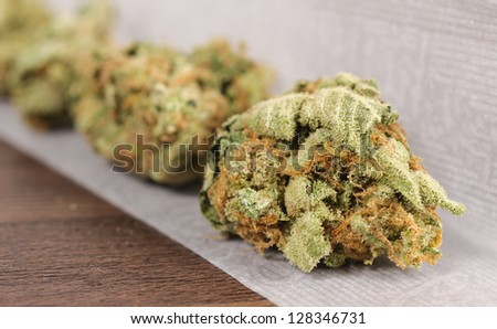Selective focus on the left front bud - stock photo