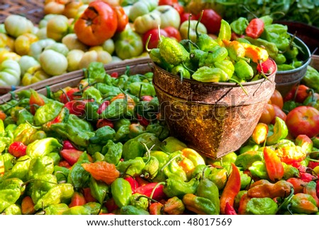 Selling the spiciest pepper on the market in Myanmar (Bhut Jolokia) - stock photo
