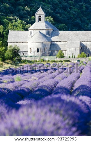 Senanque abbey with lavender field, Provence, France - stock photo