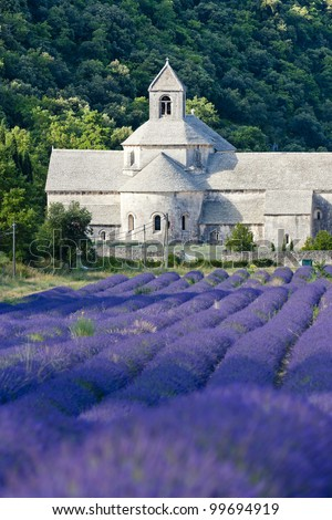 Senanque abbey with lavender field, Provence, France