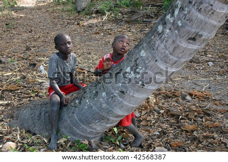 SENEGAL - FEBRUARY 19: Children Diola in Carabane Island, the islanders survive on aid from NGOs and donations from tourists, February 19, 2007 in Carabane, Senegal - stock photo