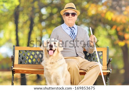 Senior blind gentleman sitting on a bench with his labrador retriever dog, in a park - stock photo