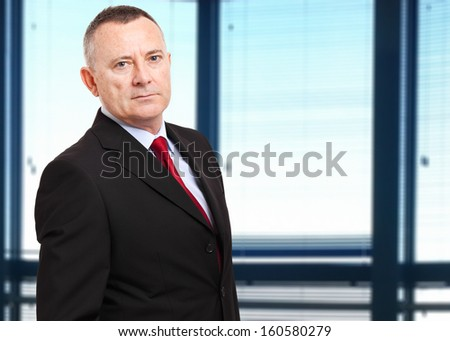 Senior businessman portrait