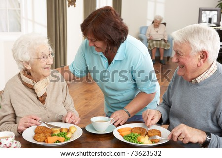 Senior Couple Being Served Meal By Carer - stock photo