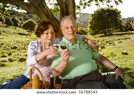 senior couple drinking wine in a picnic