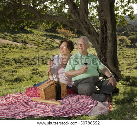 senior couple drinking wine in a picnic - stock photo