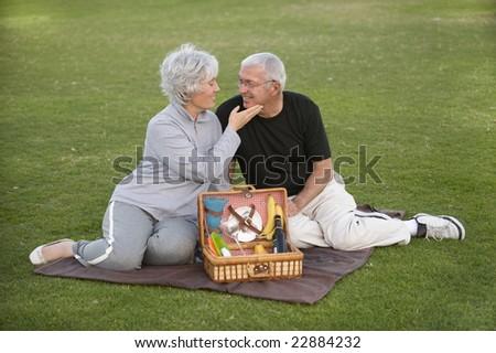 Senior couple enjoying a romantic picnic - stock photo