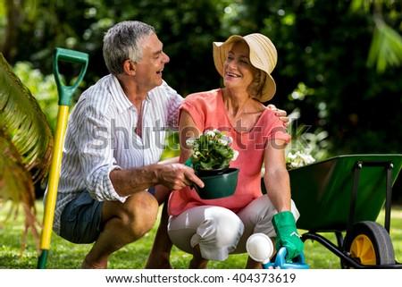 Senior couple enjoying while holding flower pot in yard - stock photo