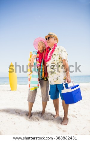 Senior couple holding icebox on the beach - stock photo