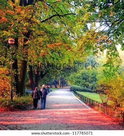 Senior couple in the park - stock photo